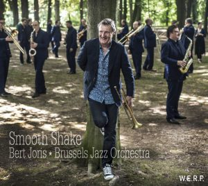 Smooth Shake (De Werf)
